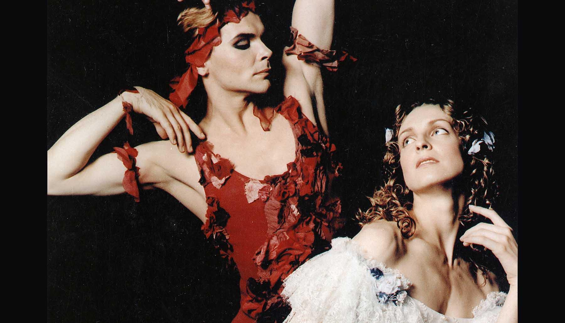 Балет видение розы фото